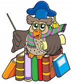 Owl teacher with parchment and books - vector illustration.