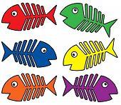 Various colors fishbones - vector illustration.