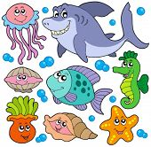 Aquatic animals collection - vector illustration.