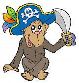 Macaco de pirata em fundo branco - ilustração vetorial.