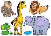 Various African animals - vector illustration.