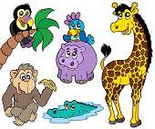 Set of African animals 2 - vector illustration.