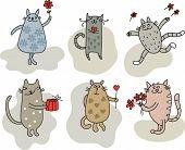 Cats for congratulation