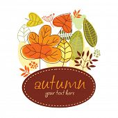 stock photo of fall leaves  - autumn banner - JPG