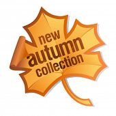 new autumn collection sticker