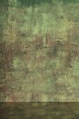 Grunge Green Background Muslin Backdrop With Floor (Insert your client)