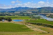 Marlborough wine region in New Zealand