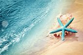 Starfish On The Summer Beach. Summer Background. Tropical Sand Beach poster