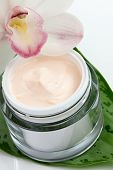 Face Cream And Orchid Flower