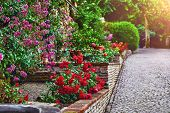 Landscape design with red roses in garden. Picturesque park walkway of paving stones and decorative  poster