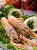 norway lobster with salad on dish