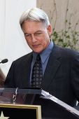 LOS ANGELES - OCT 30:  Mark Harmon at the Hollywood Walk of Fame Ceremony for Mark Harmon at Hollywood & Vine on October 30, 2012 in Los Angeles, CA