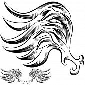 An image of a wing flourish drawing.