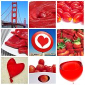 picture of piquillo pepper  - a collage of nine pictures of different red things - JPG