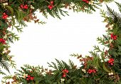 Christmas traditional border of holly, ivy, mistletoe and cedar cypress leaf sprigs with pine cones