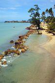 Tropical Beach And Blue Ocean In Puerto Rico