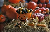 stock photo of jack-o-laterns-jack-o-latern  - Taken at my local market in Lachine - JPG