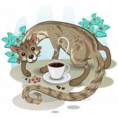 Civet Kaffee Kopi Luwak