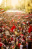Egyptian Demonstration Against Muslim Brotherhood