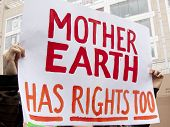 A close up of a sign that reads Mother Earth Has Rights Too is held by a protestor during a march against genetically modified organisms, also known as GMO's.