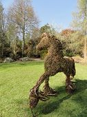 Wicker Horse Landscape