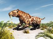 picture of saber tooth tiger  - Computer generated 3D illustration with the Smilodon - JPG