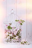 picture of edwardian  - Apple blossom filled antique birdcage on wooden background - JPG