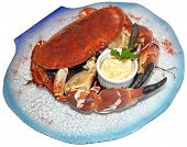 image of cooked blue crab  - Cooked crabs with sauce on blue plate - JPG
