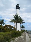 North view of the Lighthouse bay biscayne florida