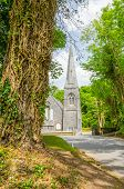 Cong, Ireland - church and trunk of tree with ivy