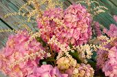 Pink Hydrangea And Astilbe