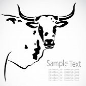 pic of calf cow  - Vector image of an cow on white background - JPG