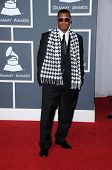James Pharo Brown  at the 52nd Annual Grammy Awards - Arrivals, Staples Center, Los Angeles, CA. 01-