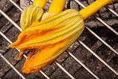 Zucchini Blossom On Grill