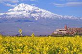 Ararat In Armenia