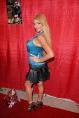 Taylor Wane  at the Celebrity Karaoke and US Troop Care Package Party, Locals Sports Bar & Grill, Los Angeles, CA. 04-06-10