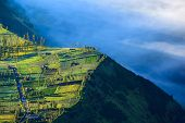 pic of bromo  - Village and Cliff at Bromo Volcano in Tengger Semeru national park Java Indonesia - JPG
