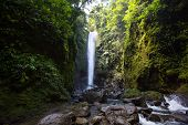 picture of negro  - Big waterfall Casaroro in Dumaguete - JPG