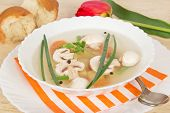 Tasty mushroom soup, slices of bread and red tulip