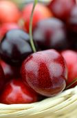 closeup of ripe, fresh and sweet cherries in wicker basket