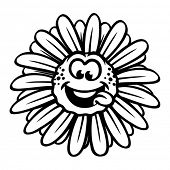 Funny chamomile flower.