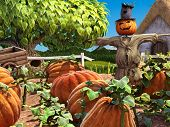 Halloween festive scene with scarecrow and pumpkin patch