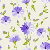 image of chicory  - Chicory seamless pattern on white background - JPG