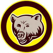 Grizzly Bear Head Circle Retro