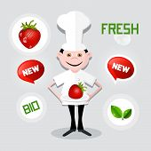 Chef - Cook Vector Illustration with Strawberry on Plate