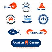 Seafood labels icons set