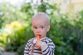Boy With A Carrot