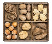 a variety of nuts (walnut, pecan, hazelnut, Brazilian and almond)  in a rustic wooden box, isolated on white
