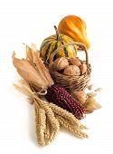 Harvest Composition