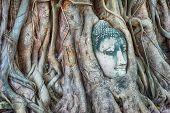 Travel to Thailand, Ayutthaya. Old tree Buddha stone sculpture. Wisdom and pray